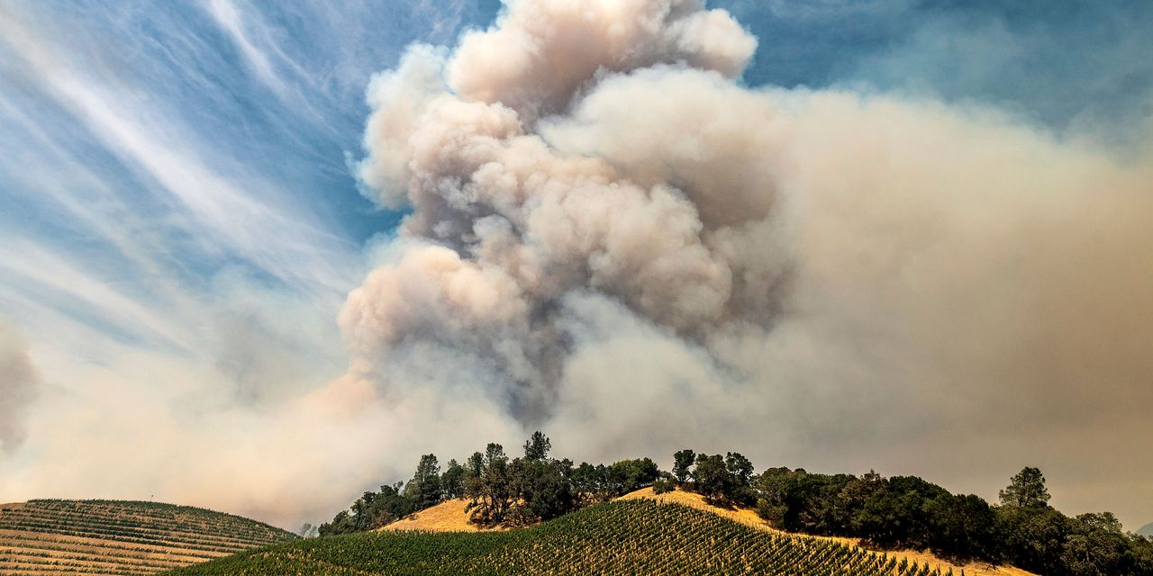 This year`s wildfires are likely `the single worst...