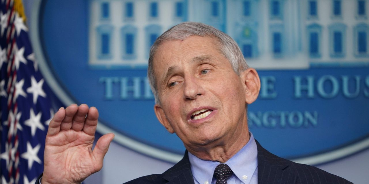 Fauci warns of more 'pain and suffering' ahead as COVID-19 cases climb