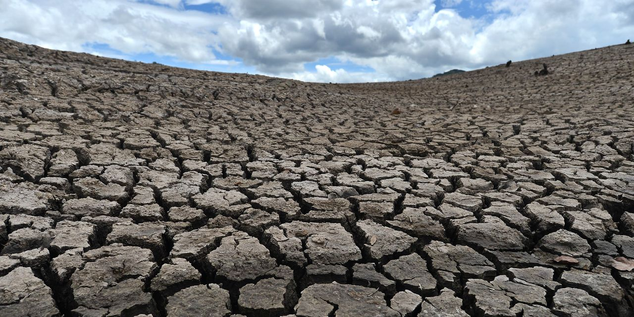 Solar power and water shortages may define our future but that doesn't make them good investments