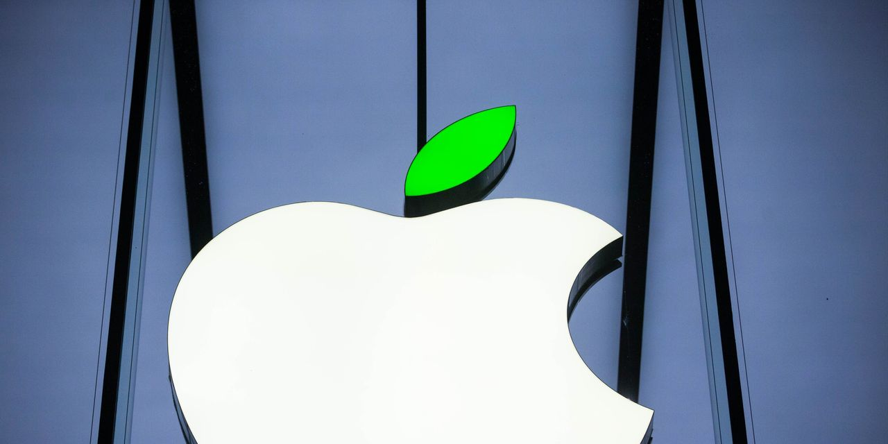 Apple launches $200 million forestry fund it says will bring financial return for investors