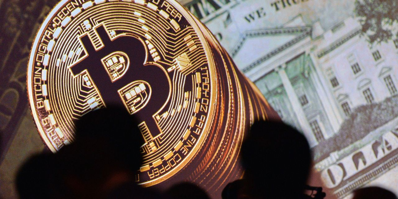 Here are 2 overlooked cryptocurrency plays from a fund manager who rode out of the dot-com bust