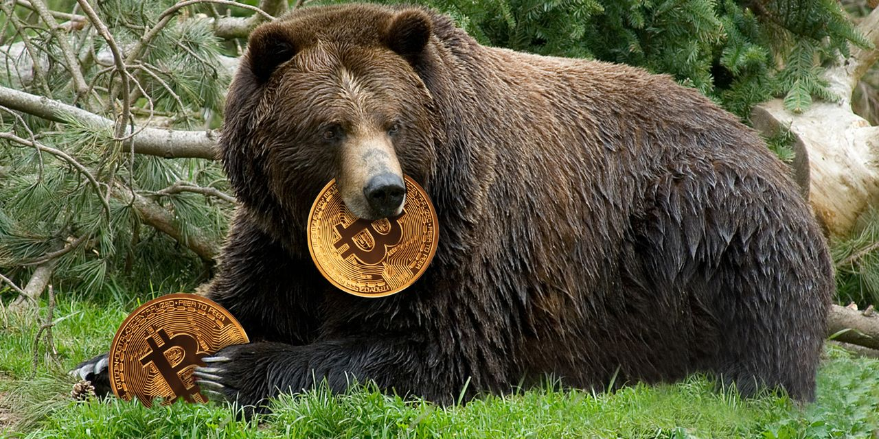 Bitcoin bears are stalking crypto prices — here's how low they could go