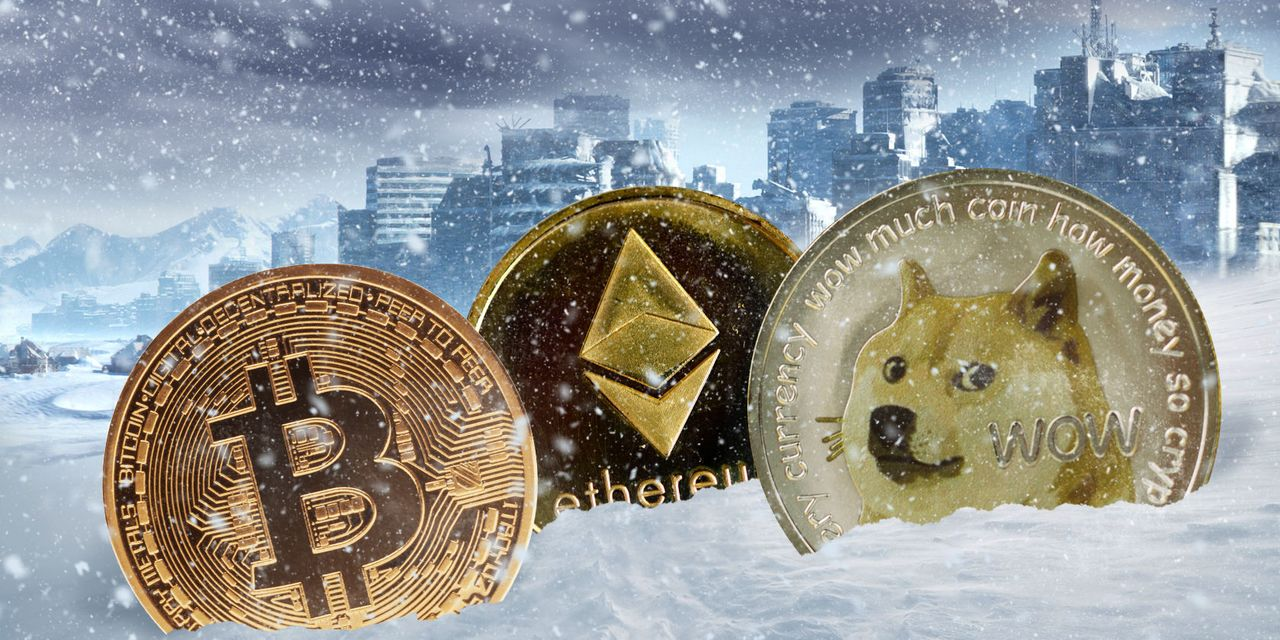 Crypto winter? Bitcoin lurches to lowest level in months and alts like dogecoin sink 48% from peak