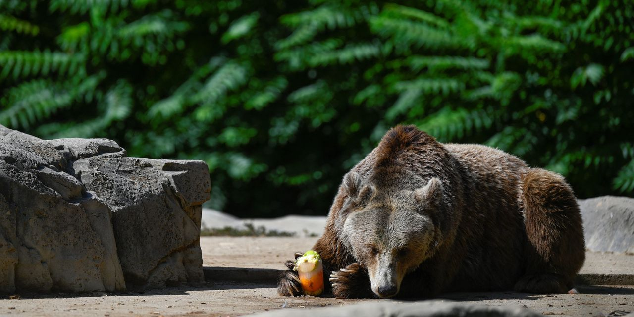 Retirement Weekly: Why you won't know it when a bear market starts